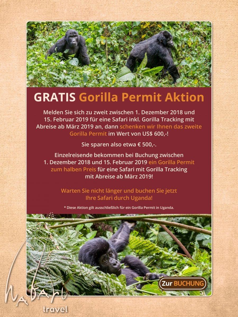 Gorilla Permit Aktion 2018-2019