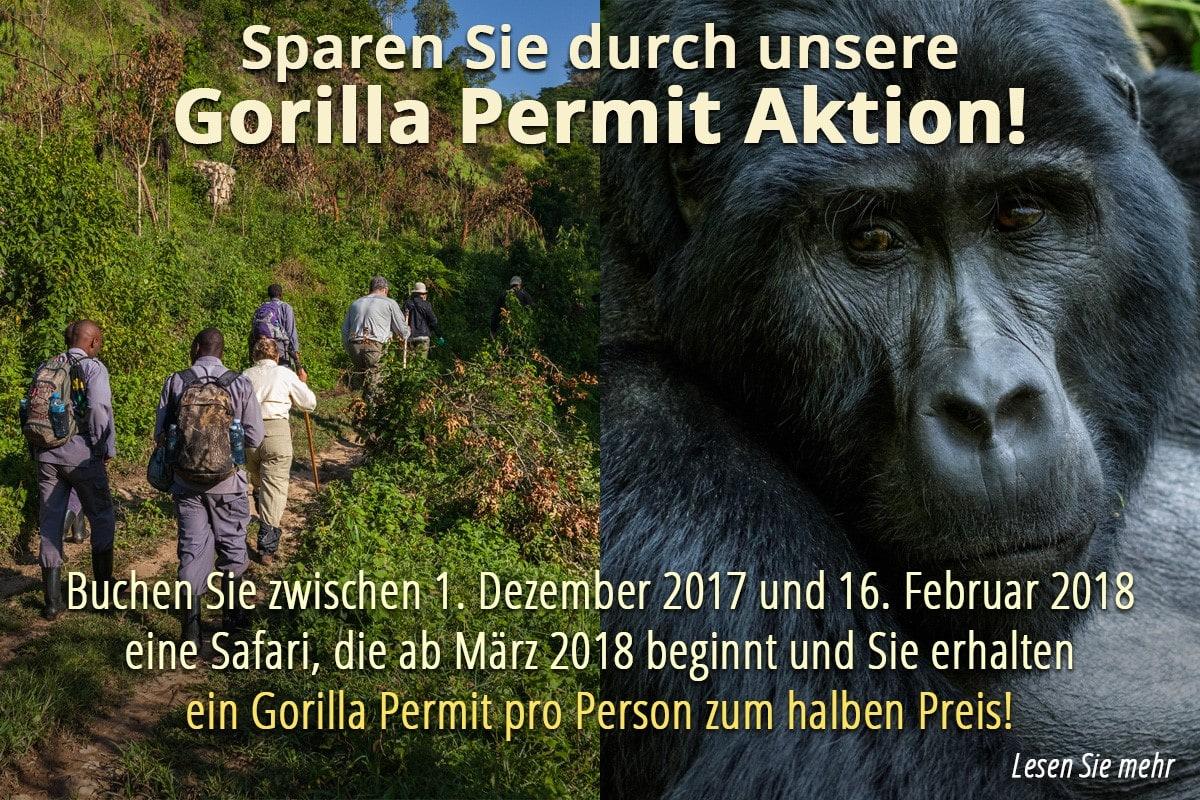 Gorilla Permit Aktion banner 2018