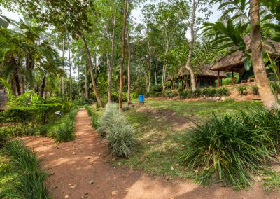 Kibale Forest Camp