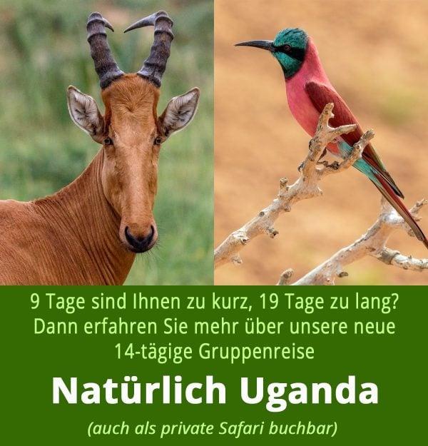 Natürlich Uganda