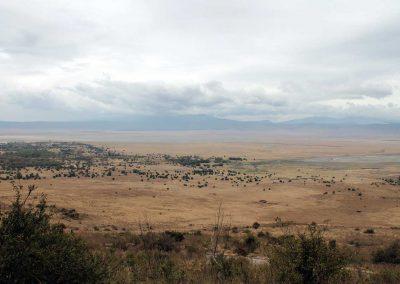 Aussicht auf den Ngorongoro Krater