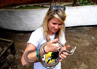 Im Meserani Snake Park