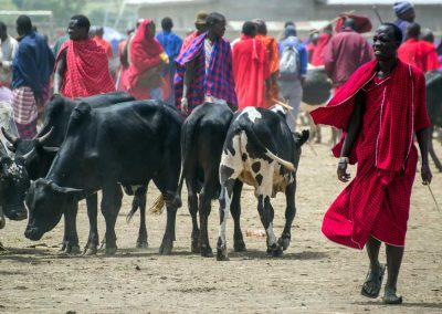 Viehmarkt in Arusha