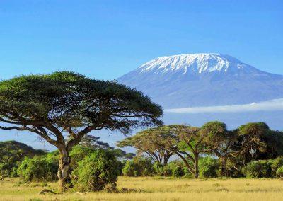 Blick auf den mächtigen Kilimanjaro