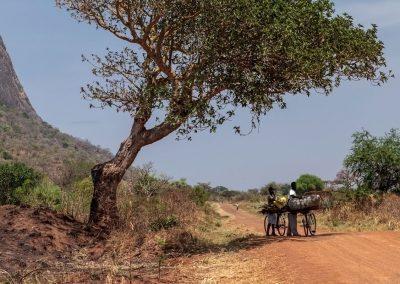 Die Fahrt nach Kidepo führt teilweise über unbefestigte Straßen