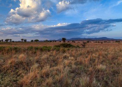 Die weite Savanne im Kidepo Valley Nationalpark