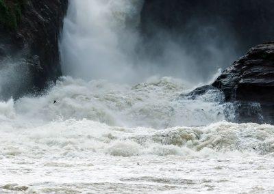 Die gewaltigen Murchison Wasserfälle