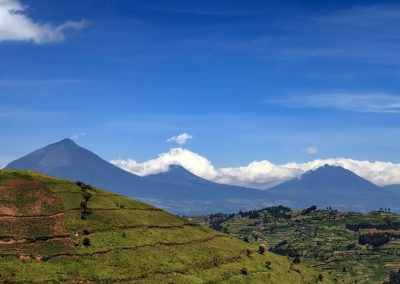 Die ugandische Seite der Virunga Vulkane: Muhavura, Gahinga und Sabinyo (v.l.n.r.)